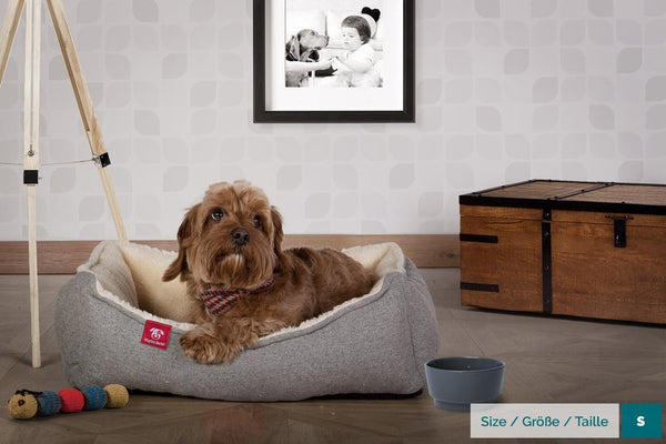 the-nest-orthopedic-memory-foam-dog-bed-interalli-lambswool-gray_2