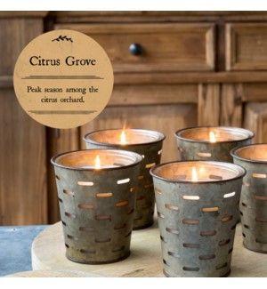 Park Hill Citrus Grove Olive Bucket Candle