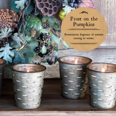 Park Hill Frost on the Pumpkins Olive Bucket Candle