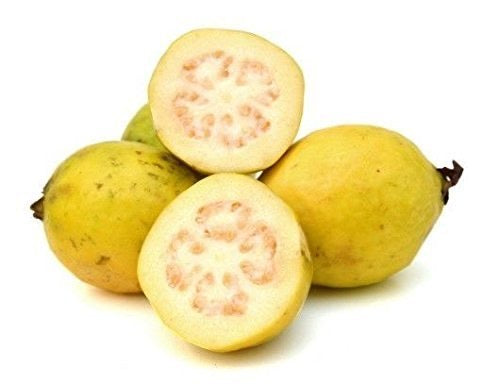 Guava White, Per Pack 1lb - Papaya Express