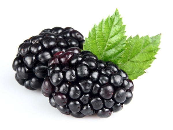 Fresh Blackberries, Per 6oz Pack - Papaya Express
