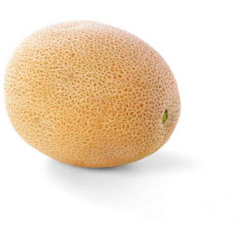Golden Cantaloupe, Per Piece - Papaya Express