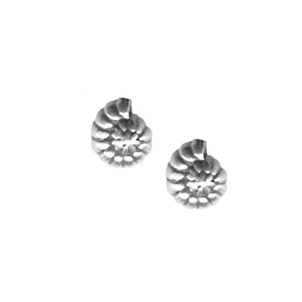 Tiny Nautilis Earrings | Giles & Brother