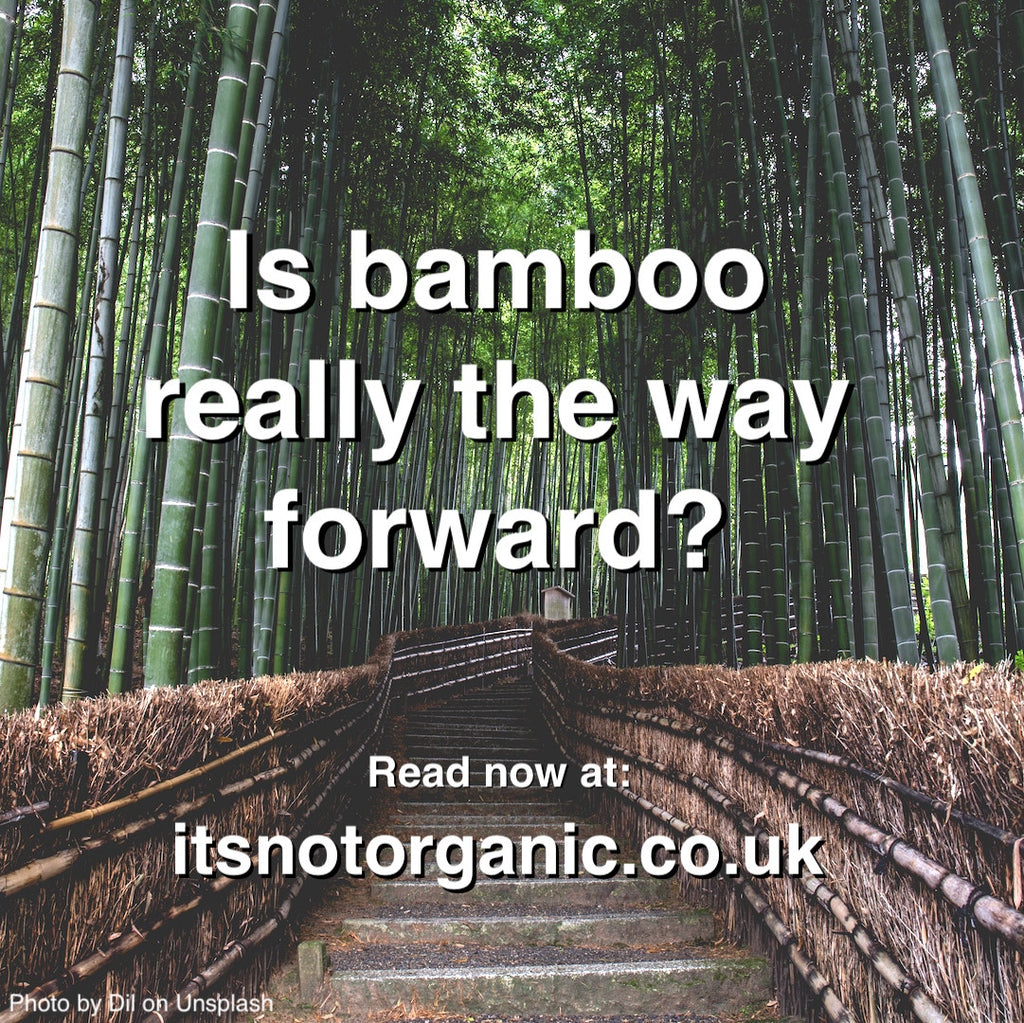 Is bamboo really the way forward?