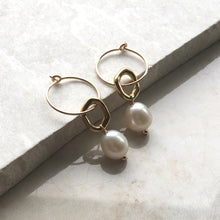 Load image into Gallery viewer, gold hoop earrings with freshwater pearl drops