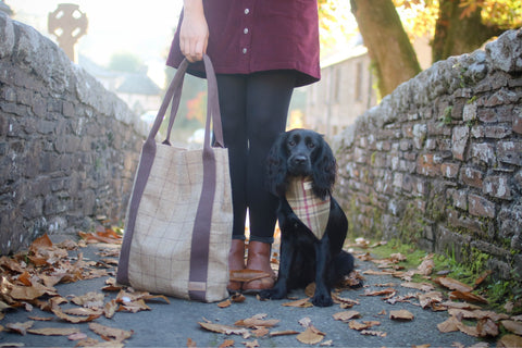 Hettie handbag and dog bandana