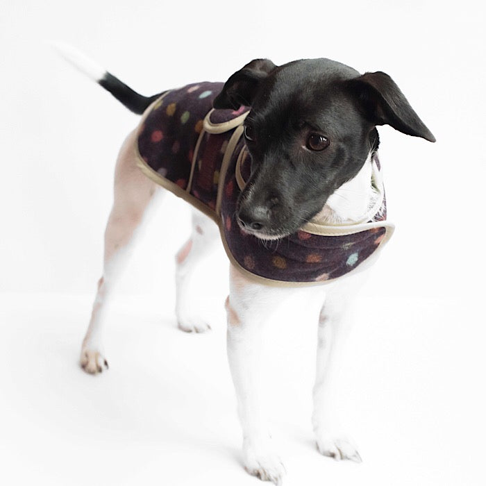Jasper Dog Coat - Multispot Wine