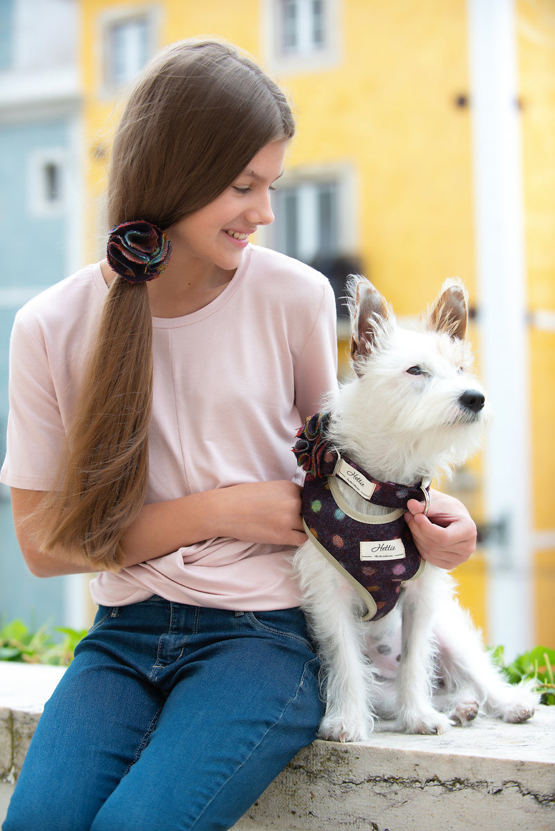 Dog Collar - Multispot Wine <br> + FREE Bowtie or Flower
