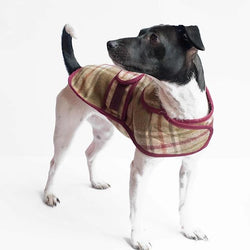 Jasper Dog Coat - Arncliffe Moonstone