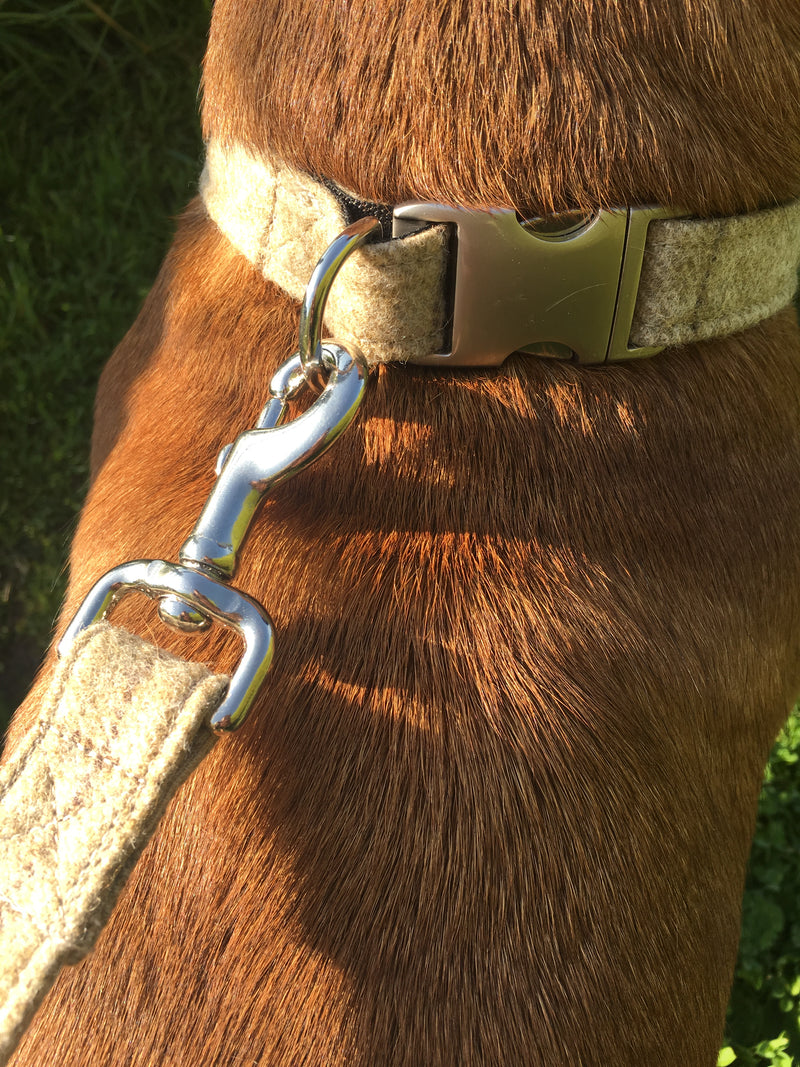 Dog Collar - Slate Oatmeal