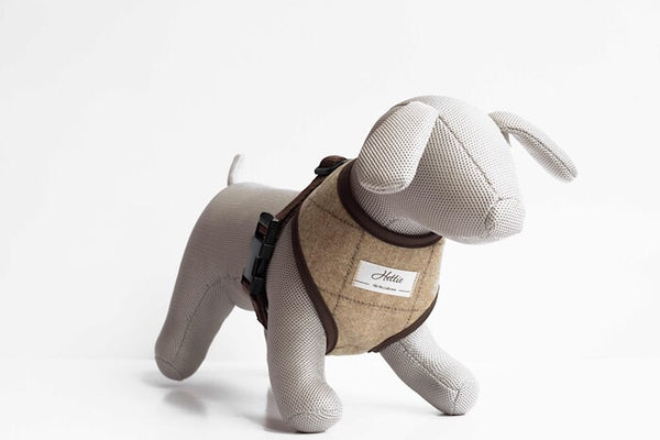 Scooby Dog Harness - Slate Oatmeal