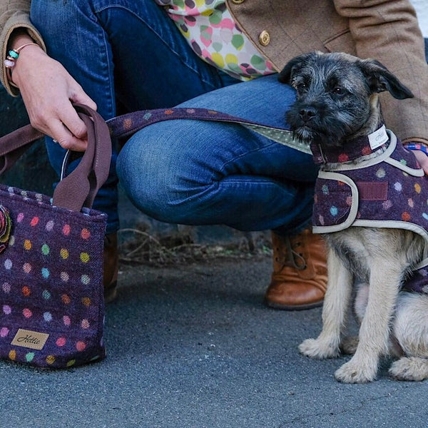 Hettie handbag  - Multispot Wine