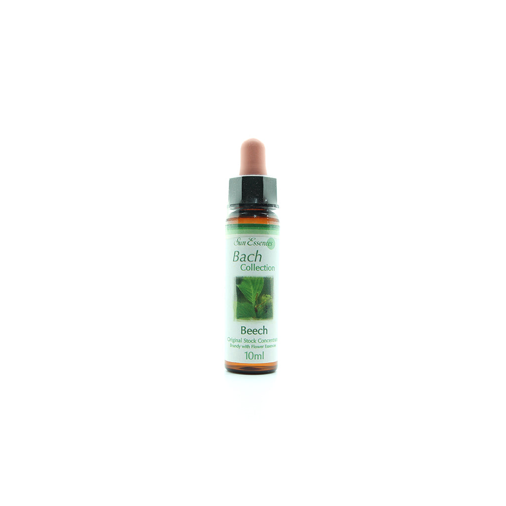 Beech Bach Flower Essence - 10ml