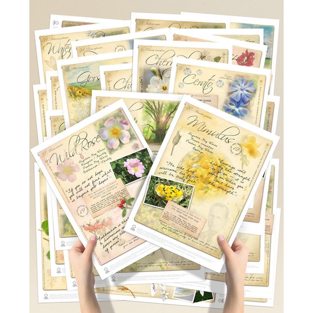 Bach Flower Poster Set
