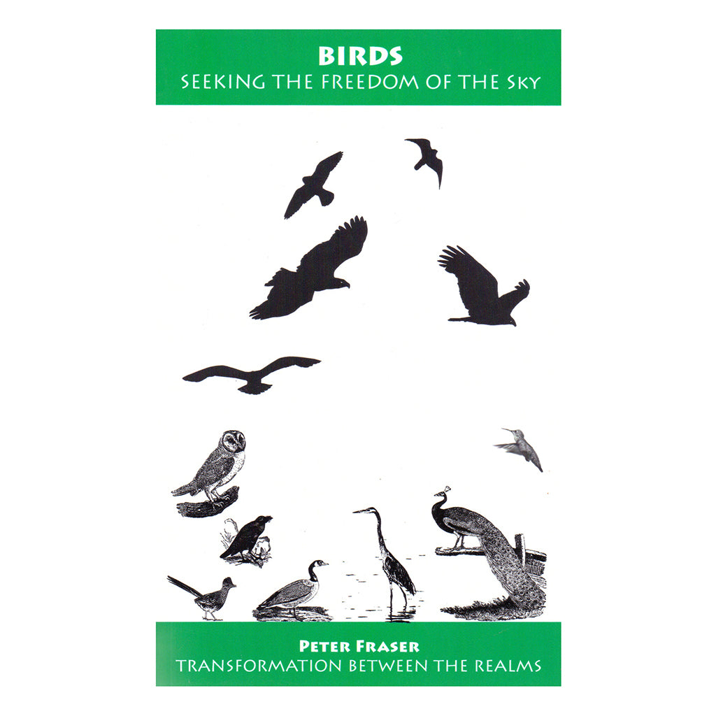 Birds: Seeking the Freedom of the Sky – Peter Fraser