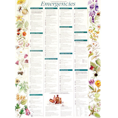 Poster - Emergencies (laminated with hangers)