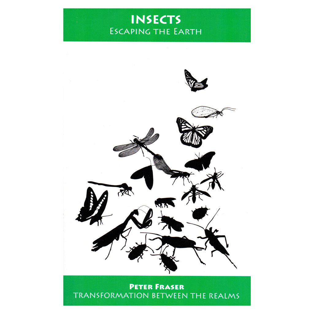 Insects: Escaping the Earth – Peter Fraser