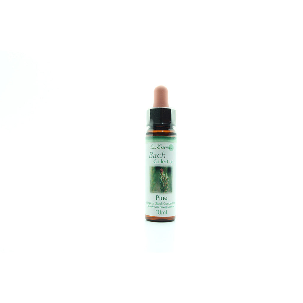 Pine Bach Flower Essence - 10ml