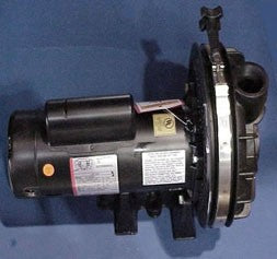 HotSpring 2HP Sta-Rite Pump
