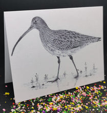 Load image into Gallery viewer, CI-04 - Curlew