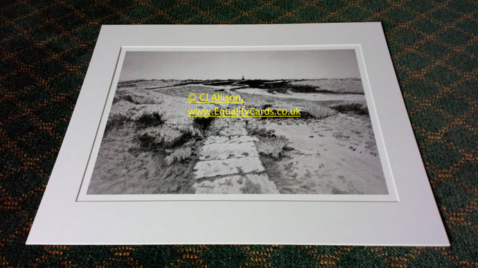 P-10 - North Yorkshire Moors (A3 print)