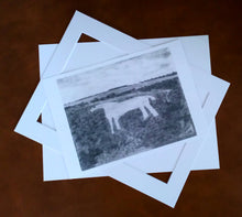 Load image into Gallery viewer, P-01 - White Horse (A4 print)