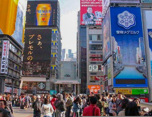 Namba Daytime Walking Tour in Osaka
