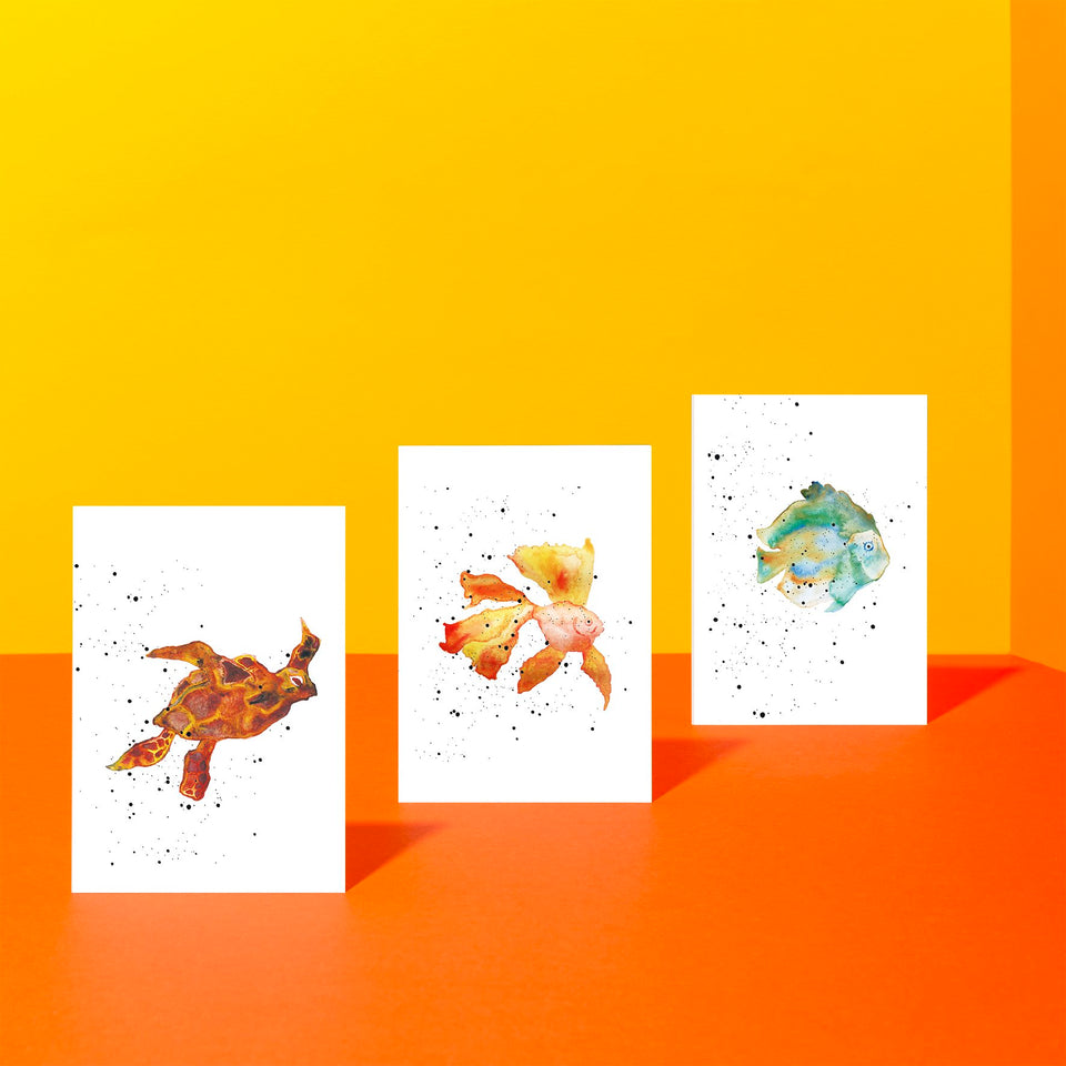turtle, goldfish, blue fish