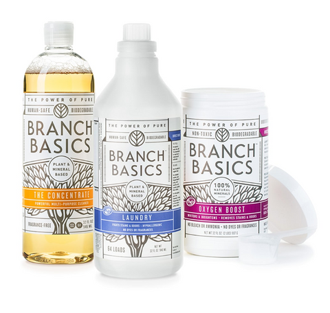 Shop My Favorite Cleaning Products – Just Ingredients with