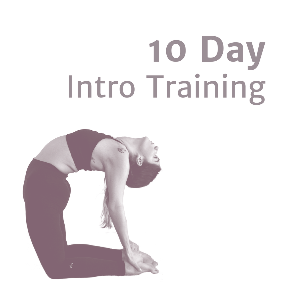 10 Day Intro Training