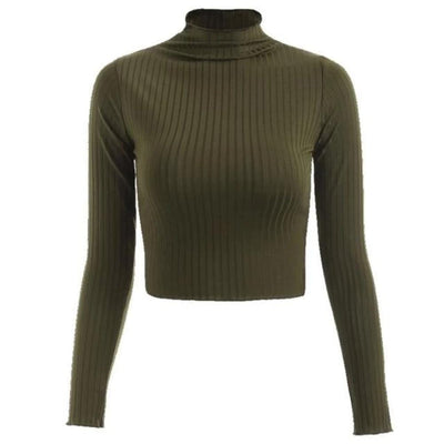 Crop-top Turtleneck Sweater