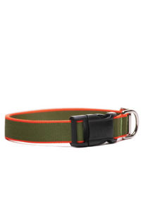 Chelsea Collar (Green & Orange)