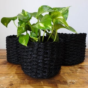 Black Flower Baskets