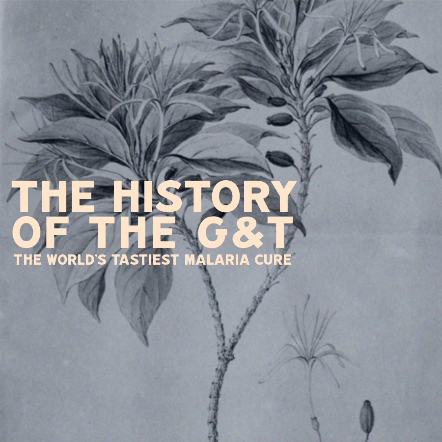 The History of the G&T: The World's Tastiest Malaria Cure