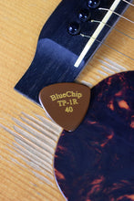 Load image into Gallery viewer, Blue Chip TP-1R Flat Pick