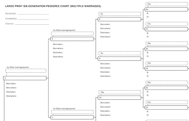 Genealogy chart with multiple spouses