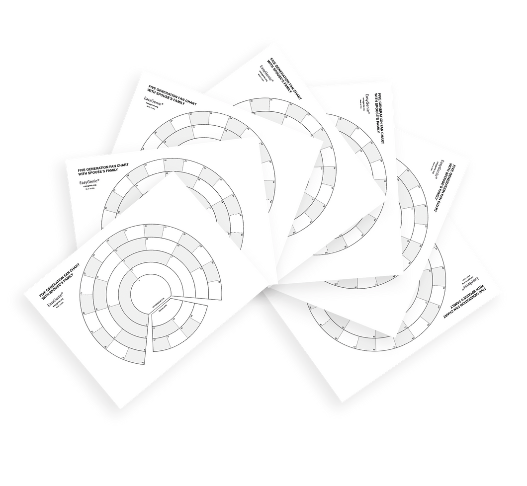 LARGE PRINT Five Generation Split Fan Charts for Genealogists (7-pack)