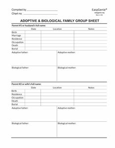 Family Group Sheet for Adoptees and Family (7 double-sided sheets)