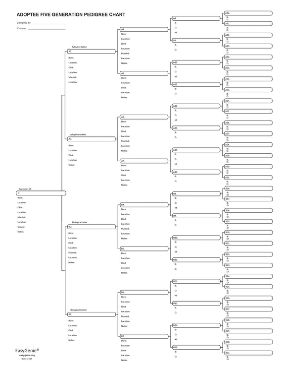 5 Generation Large Print Pedigree Chart for Adoptees and Family Members (17 x 22 inches, single sheet)