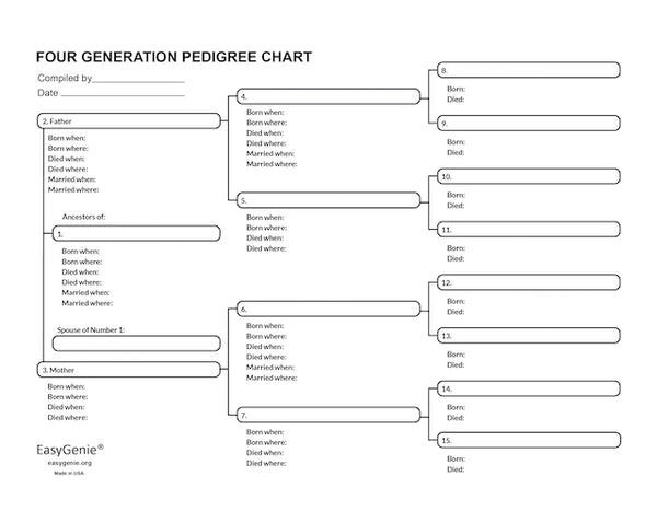 Large-Print Genealogy Charts and Forms Kit (30 Sheets) by EasyGenie