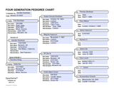 PDF Download: Large Print Genealogy Forms Kit | Fillable Pedigree Chart and Family Group Worksheets