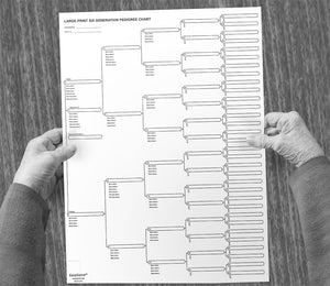 TEN LARGE PRINT 6-Generation Pedigree Charts for Ancestry