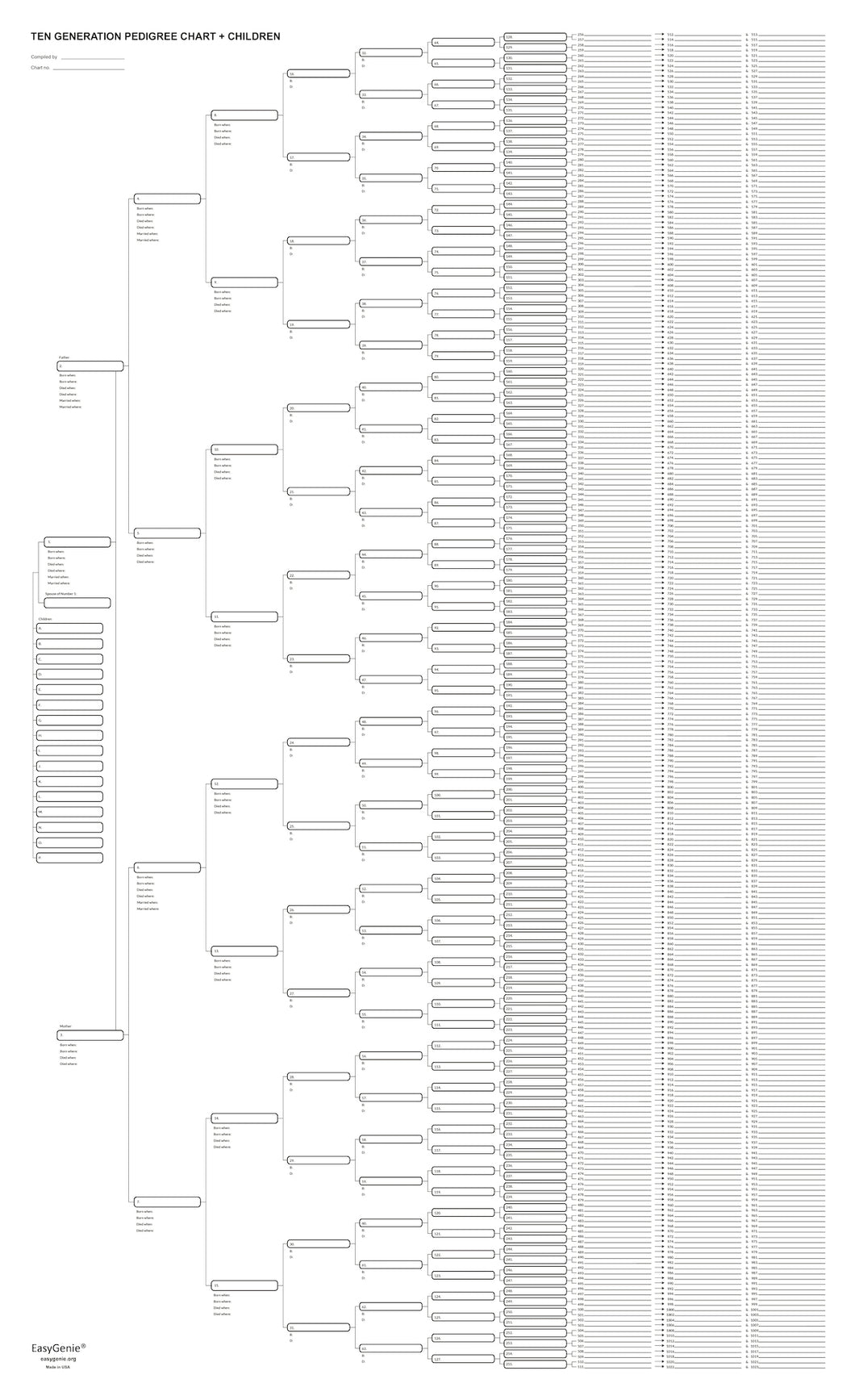 10 Generation Blank Pedigree Chart + Kids (22 x 36 inches, single sheet)