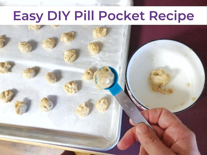 Easy 3-Ingredient DIY Pill Pocket Recipe for Dogs