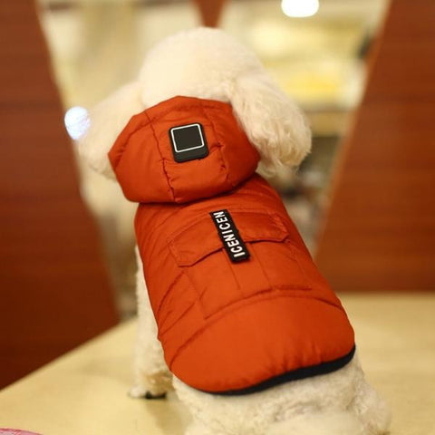 Winter hoodie dog coat