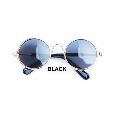 Image of cute black dog sunglasses