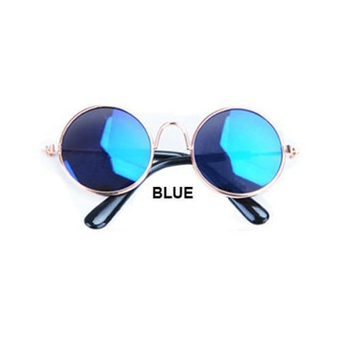 Cute blue dog sunglasses