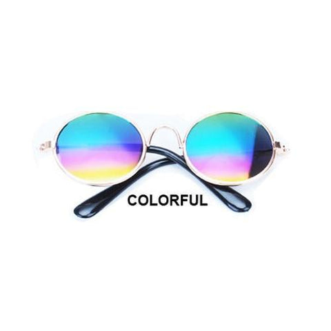 Cute colorful dog sunglases