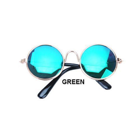 Image of cute green dog sunglasses