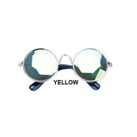 cute yellow dog sunglasses